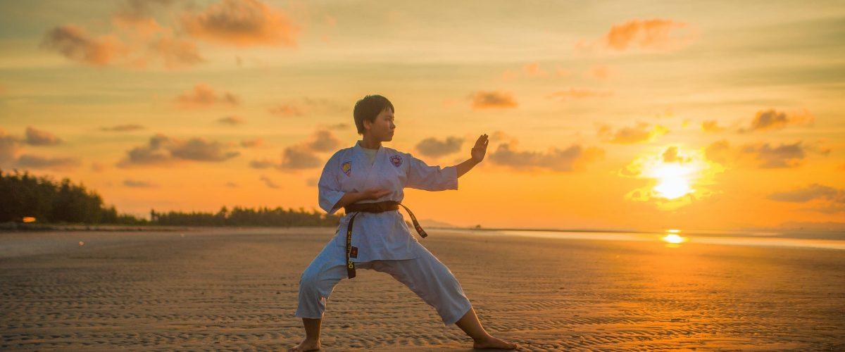 Karate Pose On Beach